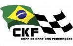 300275_661775_logo_copafedera